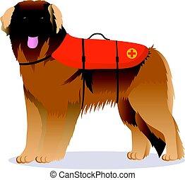 Leonberger lifesaver dog vector illustration