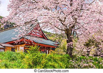 Shizuoka, templo