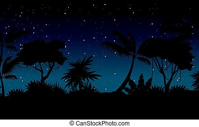 Beauty landscape jungle at night collection