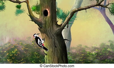 Woodpecker on a Pine Tree - Woodpecker Knocking on a Pine...