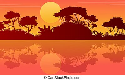 Landscape tree on the jungle with reflection