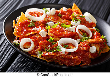 Mexican food fried tortillas with chicken and tomato salsa...