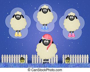sheep counting sheeps - illustration of sheep counting...