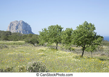 Vedra Island from outside Hort Cove; Ibiza; Spain