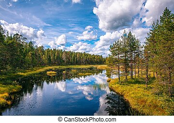 Idyllic summer landscape with clear lake in Finland -...