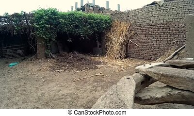 Traditional egyptian farm in luxor - Traditional ethnic...