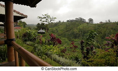 Panorama view on terrace agricultural fields. Winter rainy...