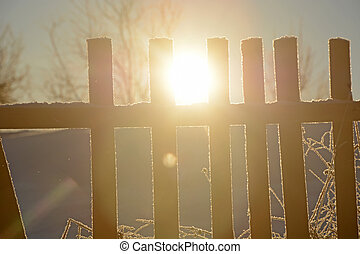 Sun and old wooden fence in Russian backwoods