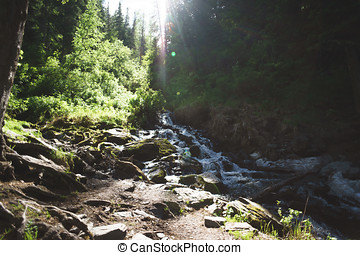 waterfall in forest, Altai Republic - waterfall in forest,...