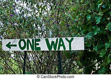 One Way - Handmade sign in green foliage.