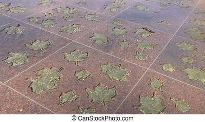 A modern fountain. Water flows through the stone leaves.