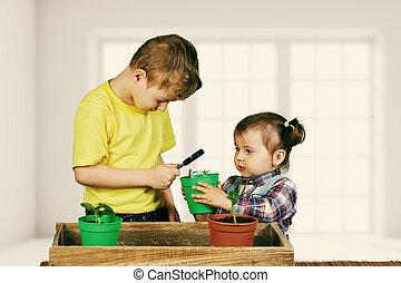 Cuidado, plantas, hermana, jardinería, hermano