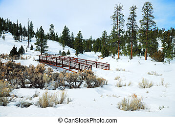 Snow field with bridge and trees