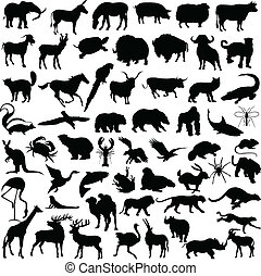 animal mix illustration vector silhouettes