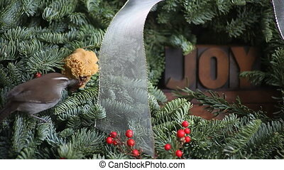bird on a Christmas wreath with joy - a wren feeds from a...