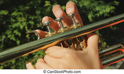 Sunny trumpet fingers - Womanu2019s hands playing a trumpet...