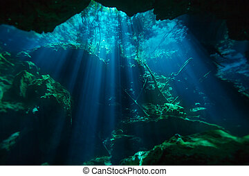 Beautiful underwater world of Azul cenote of Quintana roo in...