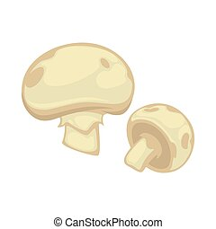 Big and small white champignon with gray spots isolated....