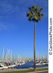 Long Beach Marina - USA
