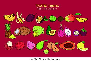 Colored Exotic And Tropical Fruits Set - Colored exotic and...