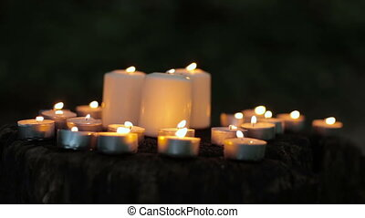 Burning tea light candles in the dark forest at night