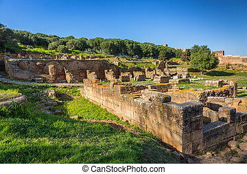 Chellah sanctuary in Rabat, Morocco - Ruins of Chellah...