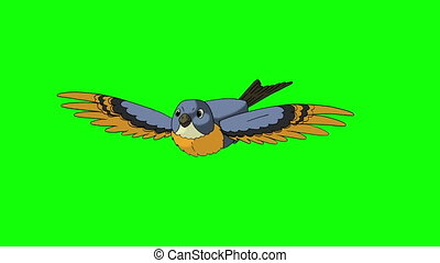 Blue Bird Flies. Front View. Animated Looped Motion Graphic...