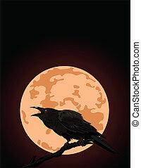 烏鴉, croaks, 針對, 充分, 月亮