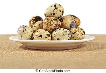 ensacar, huevos, tazón, blanco, codorniz
