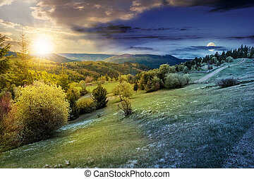 forest on a mountain hillside in rural area. day and night -...