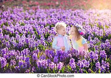 Kids playing in blooming garden with hyacinth flowers