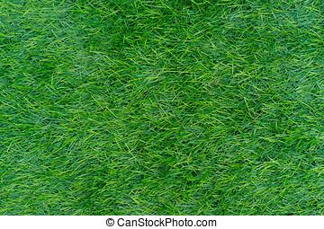 background of green grass. decorative artificial grass