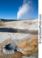 Geyser - Cone geyser eruption in the Yellowstone national...