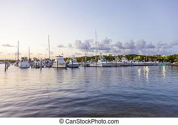 Marina in Coral Gables, Florida - Yachts and fishing boats...
