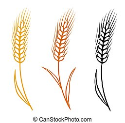 colorful isolated wheat ears set - colorful isolated hand...
