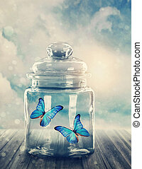 Two butterflies closed in a jar
