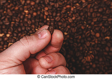 Close-up of fingers showing roasted coffee bean with blurred...