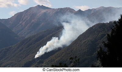 Helicopter dropping water to put out wildfires - Fire...