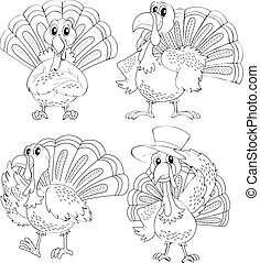 Doodle animal outline of turkey in four actions illustration