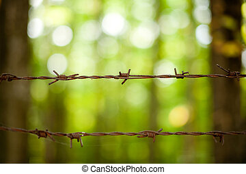 Rusty barb wire - Close up of rusty barb wire over green...