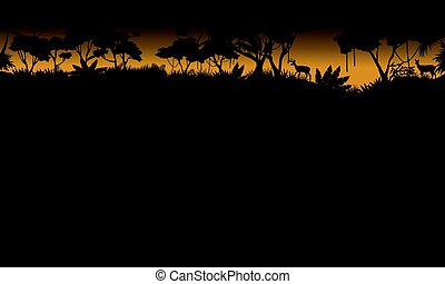 Silhouette of tree on the forest scenery