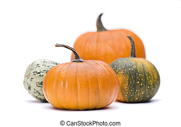 pumpkins - Halloween pumpkin isolated on white close up