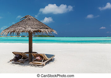palapa and sunbeds on maldives beach - travel, tourism,...