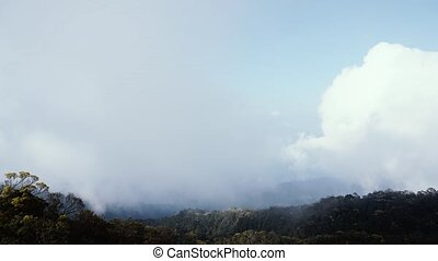 Timelapse of clouds shadow over mountain forest. Danang....