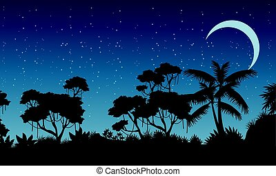 Landscape of rain forest at the night vector art