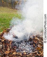 burning leaf pile - leaf pile burning in the back yard in...