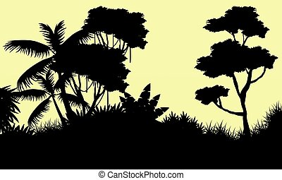 Silhouette of tree on the forest landscape