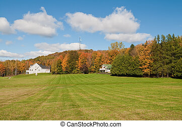 Autumn - Field and woods in autumn, St Albans, Vermont
