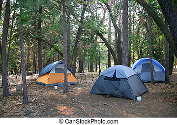 Three Tents Set up in the Lush Green Woods Outdoors