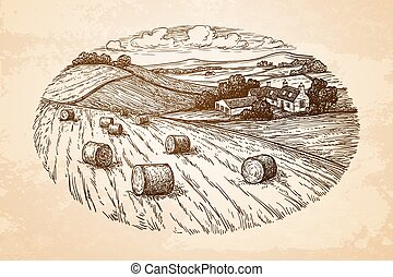 Rural landscape with hay bales - Field with haystacks....